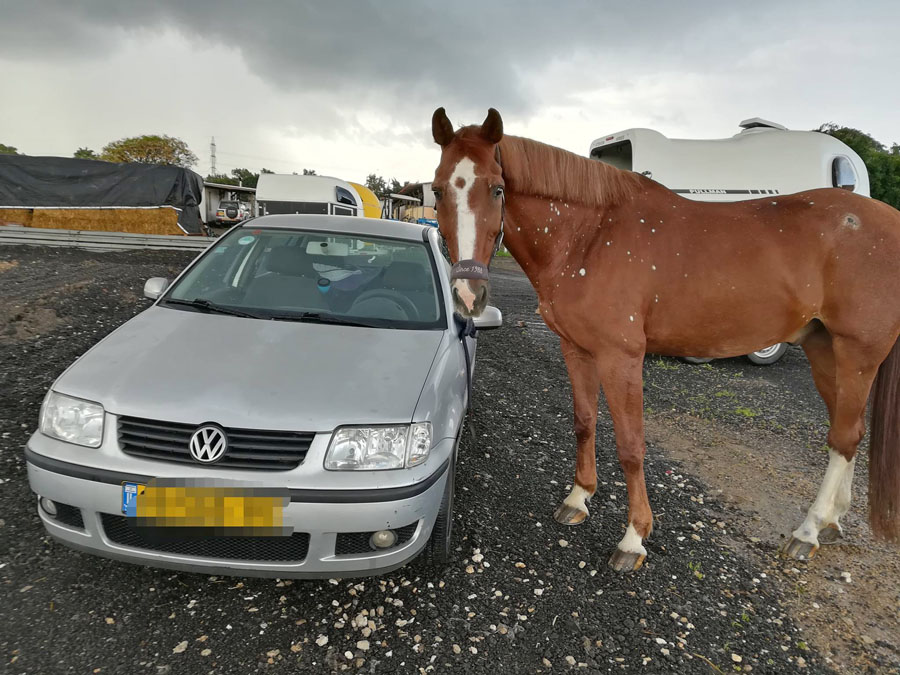 76 כוח סוס